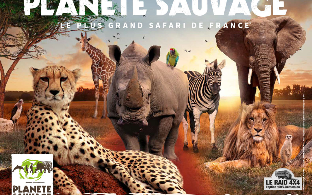 Planète Sauvage, la success story d'un parc animalier